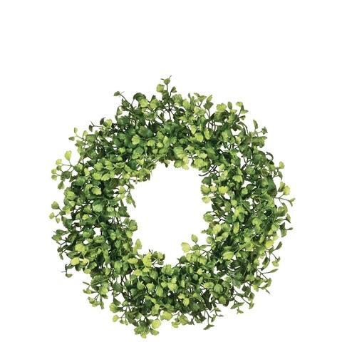 Sullivans Maiden Hair Fern Wreath
