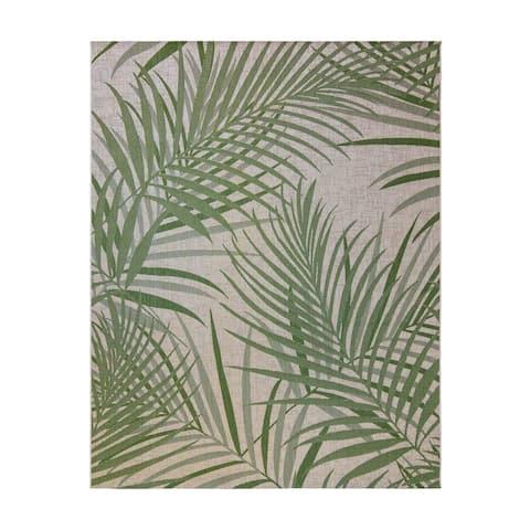 Paseo Paume Palm