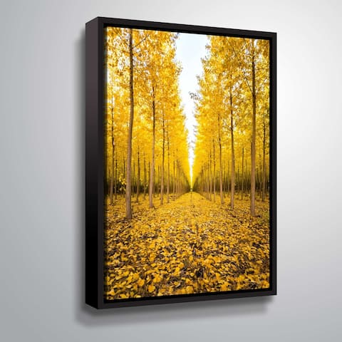 Poplar trees in Oregon by Cody York Gallery Wrapped Floater-framed Canvas