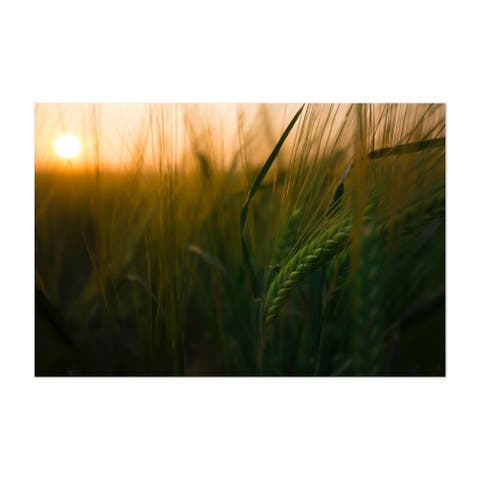 Calgary Alberta Agriculture Crops Early Unframed Wall Art Print/Poster