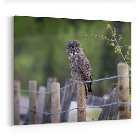 Calgary Alberta Animals Backroad Bird Canvas Wall Art Print