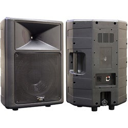 PylePro 500-watt 12-inch 2-way Speaker Cabinet