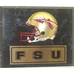 Florida State 9x12 Helmet Plaque
