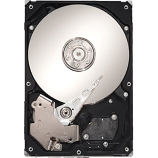 Seagate ST310005N1A1AS-RK 1 TB Internal Hard Drive