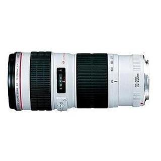 Canon EF 70-200mm f/4L USM Telephoto Zoom Lens|https://ak1.ostkcdn.com/images/products/3207984/P11317257.jpg?_ostk_perf_=percv&impolicy=medium