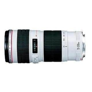 Canon EF 70-200mm f/4L USM Telephoto Zoom Lens|https://ak1.ostkcdn.com/images/products/3207984/P11317257.jpg?impolicy=medium
