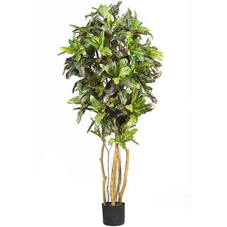 Silk Croton 5-foot Tree|https://ak1.ostkcdn.com/images/products/3242052/P11351743.jpg?impolicy=medium