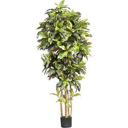Silk Croton 6-foot Tree|https://ak1.ostkcdn.com/images/products/3242053/3/Silk-Croton-6-foot-Tree-P11351744.jpg?impolicy=medium