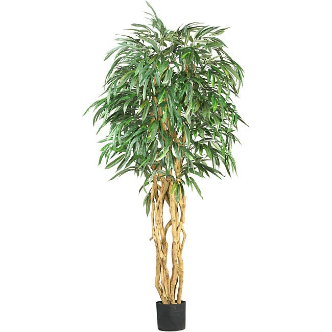 Shop Silk Weeping Ficus 6 Foot Tree Free Shipping Today