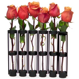 Danya B 6-tube Hinged Vase