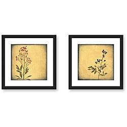 Gallery Direct Walter Paulson 'Botanica' Framed Art Print Set