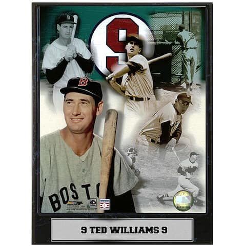 Ted Williams 9x12 Baseball Photo Plaque