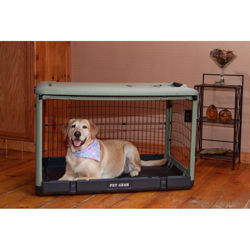 Pet Gear PetGear Colored Steel Crate with Bolster Pad (Gr...
