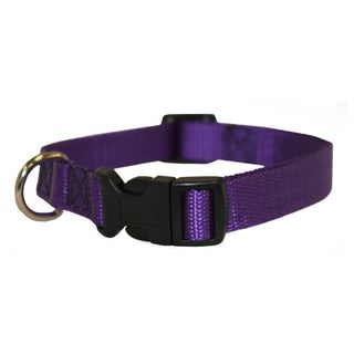 Majestic Pets 10 to 16-inch Adjustable Dog Collar