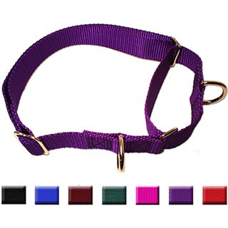 Majestic Pet Martingale Training Collar (3 options available)