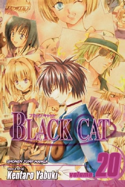 Black Cat 20: A Carefree Tomorrow (Paperback)