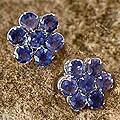 Sterling Silver Iolite 'Cornflowers' Earrings (India)