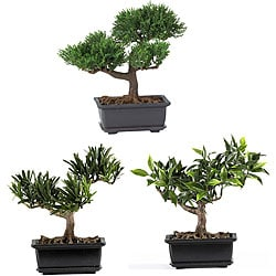 Bonsai Silk Plant Collection (Set of 3)