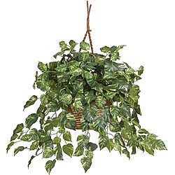 Pothos Silk Plant in Hanging Basket - Thumbnail 0