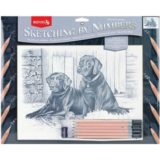 Black Labrador Sketching By Number Kit (13 x 16)