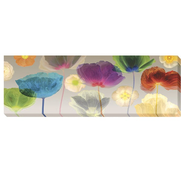 Robert Mertens 'Poppy Panorama' Canvas Art