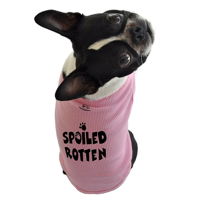 'Spoiled Rotten' Cotton Dog Tank Top