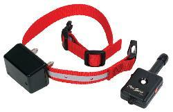 Basic Remote Dog's Collar Trainer