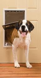 PetSafe White Extra Large Freedom Door