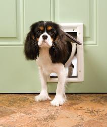 PetSafe Freedom Premium Small White Pet Door