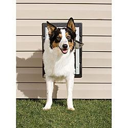 PetSafe Medium Non-rusting Aluminum Frame Wall Entry Pet Door