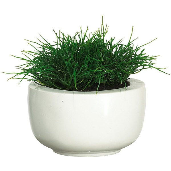 Shop Sea Grass Silk Plant With White Vase Free Shipping Today