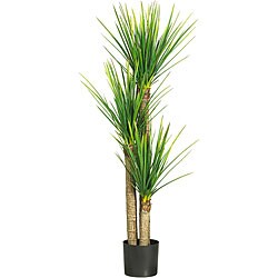 58.5-inch Triple Stalk Yucca Silk Tree
