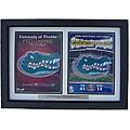 Florida Gators 2006 National Football Championship Framed Print