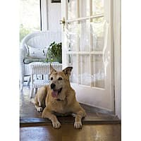White Antiscratch Crystal-clear Plastic Door Shield for Pets