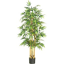 Silk 64-inch Bamboo Tree
