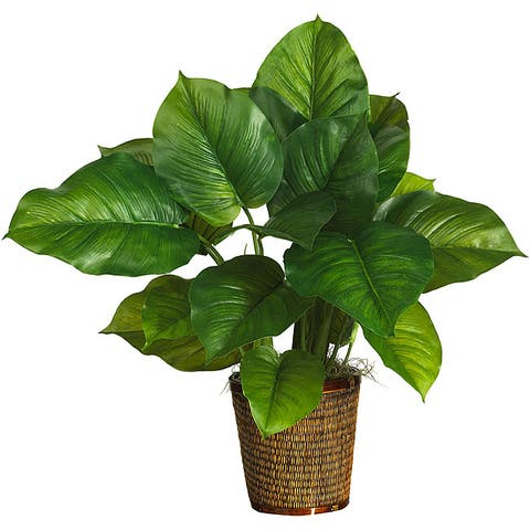 Large-leaf 29-inch 'Real Touch' Philodendron Silk Plant
