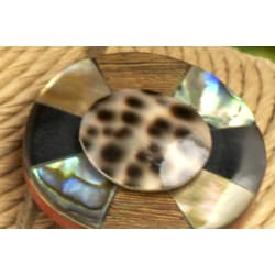Handmade Shell and Wood 'Circle Cowrie' 3-piece Jewelry Set (Philippines) - Thumbnail 1