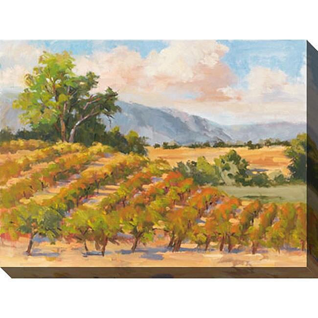Gallery Direct Karen Wilkerson 'Wine Province I' Giclee Canvas Art