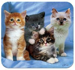 'Kittens' Deluxe Antimicrobial Mouse Pad - Thumbnail 2