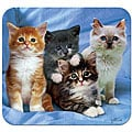 'Kittens' Deluxe Antimicrobial Mouse Pad