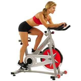 Sunny Pro Indoor Cycling Bike|https://ak1.ostkcdn.com/images/products/3937857/P11976244.jpg?impolicy=medium