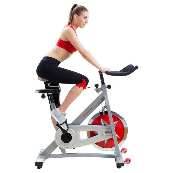 Sunny Pro Indoor Cycling Bike