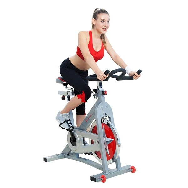 Sunny Pro Indoor Cycling Bike - White