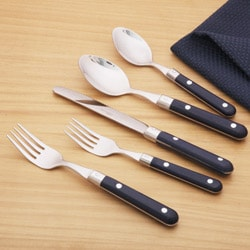 Ginkgo Le Prix 20-piece Navy Blue Flatware Set