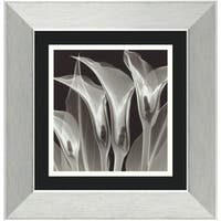 Framed Art Print 'Four Callas #3' by Steven N. Meyers 14 x 14-inch