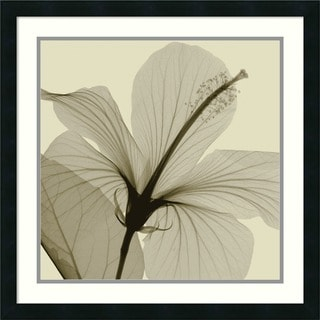 Framed Art Print 'Hibiscus' by Steven N. Meyers 24 x 24-inch