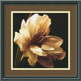 Charles Britt 'Timeless Grace I' Framed Art Print