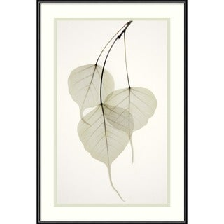 Albert Koetsier 'Bo Tree' Framed Art Print