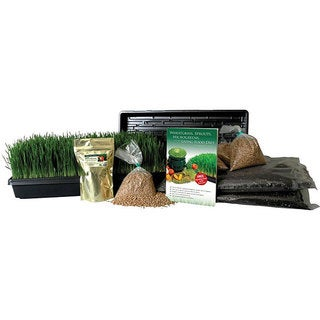 Organic Wheatgrass Growing Kit with Grow and Juice Wheat Grass