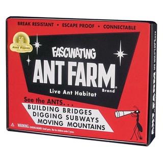 Vintage Ant Farm